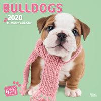 Studio Pets Bulldogs Kalender 2020