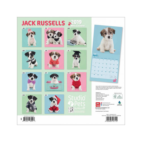 studio pets jack russell kalender 2019 bestellen. Black Bedroom Furniture Sets. Home Design Ideas