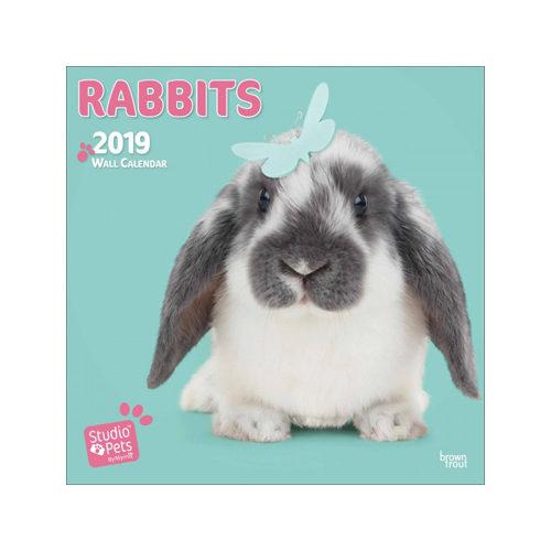 Studio Pets Rabbits Kalender 2019