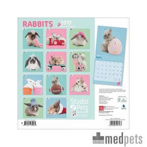 Product afbeelding van Studio Pets Rabbits Kalender 2019