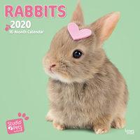 Studio Pets Rabbits Kalender 2020