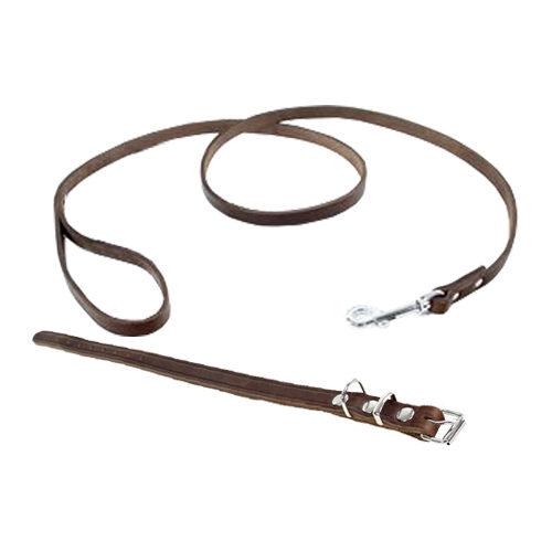 Tijssen Halsband & Hundeleine aus Fettleder - Braun