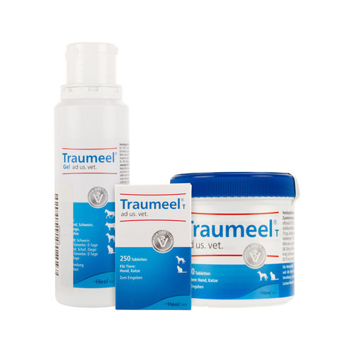 Traumeel T