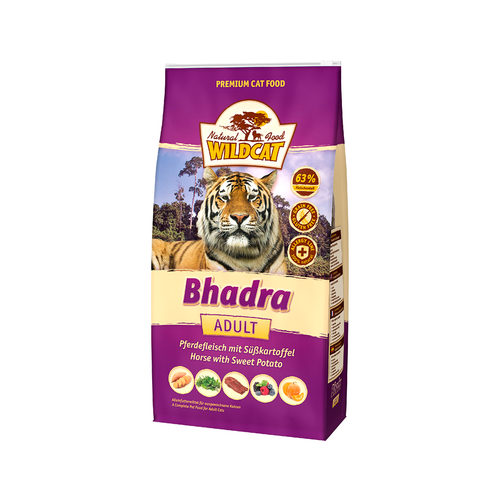 Wildcat Bhadra Adult