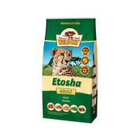Wildcat Etosha Adult