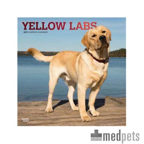 Product afbeelding van Yellow Lab Retrievers Kalender 2019