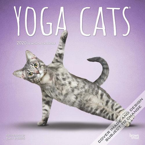 Yoga Cats Calendrier 2020