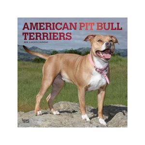Afbeelding American Pitbull Terrier Kalender 2019