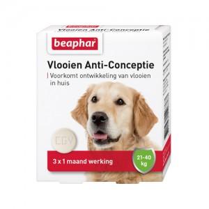 Beaphar Vlooien Anti-Conceptie Hond 20 - 40 kg