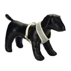 Beeztees Puppy Tuig – Geel – Maat M