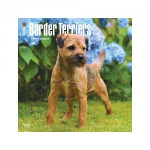 Afbeelding Border Terrier Kalender 2019