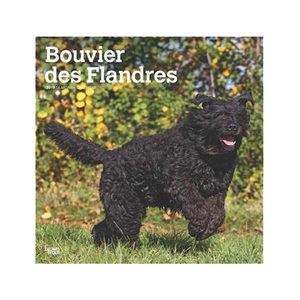 Afbeelding Bouvier des Flandres Kalender 2019