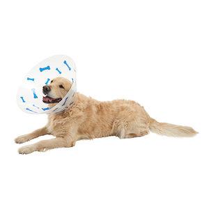 Buster Hondenkraag Design Bones – 30 cm