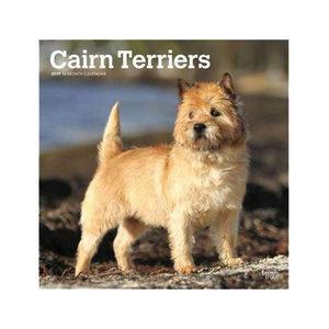 Afbeelding Cairn Terrier Kalender 2019