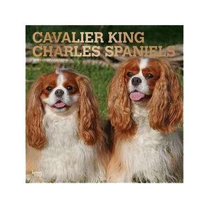 Afbeelding Cavalier King Charles Spaniels Kalender 2019