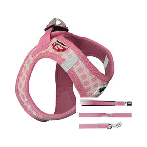 Curli Vest Harness Air-Mesh & Leash Puppy Set - S - Lichtroze