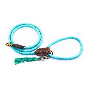 DWAM Hondenriem Turquoise - S