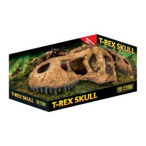 Exo Terra T-Rex Schedel