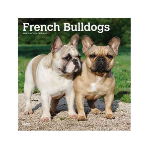 Afbeelding French Bulldogs Kalender 2019