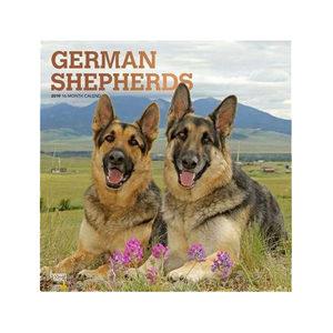 Afbeelding German Shepherds Kalender 2019