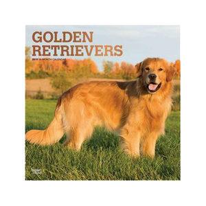 Afbeelding Golden Retriever Kalender 2019