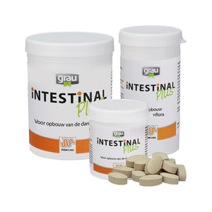 GRAU Intestinal Plus - 300 tabletten