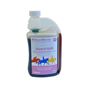 Hilton Herbs GastriX Plus - 500 ml