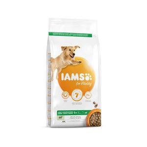 IAMS Dog Adult Large Breed - Lamb - 3 kg