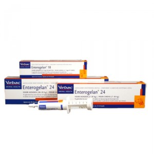 Enterogelan Pasta - 24 ml