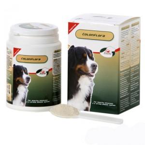 PrimeVal Colonflora Hond - 155 g