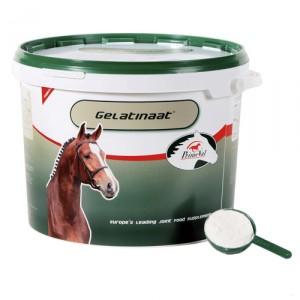 Primeval Gelatinaat paard - 2 kg