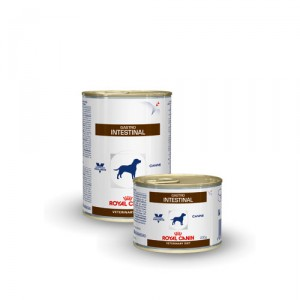 Royal Canin Gastro Intestinal hond blik 12 x 200 g
