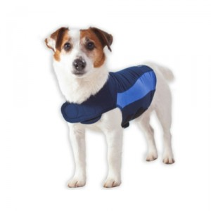 Thundershirt Polo Blauw XXS