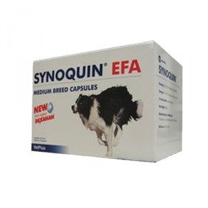 Vetplus Synoquin EFA - Medium Breed 120 Capsules