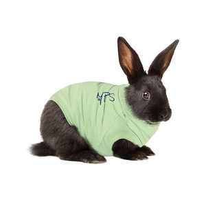 Medical Pet Shirt Konijn XXXS