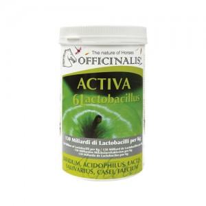 Officinalis Activa 6L - 1 kg