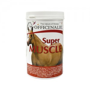 Officinalis Super Muscle - 800 g