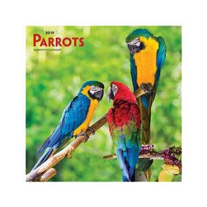 Parrots Kalender 2019