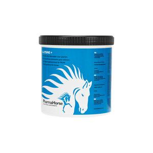 PharmaHorse L-Lysine - 500 g