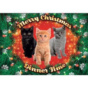 Plenty Gifts - Xmas Placemat Kittens - 42 x 30 cm