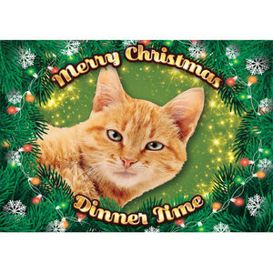 Plenty Gifts - Xmas Placemat Rode Kat - 42 x 30 cm