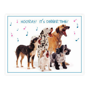 Plenty Gifts Placemats - Dog Mix
