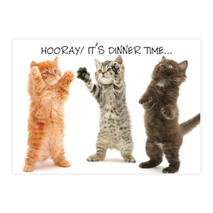 Plenty Gifts Placemats - Mixed Kittens Hooray