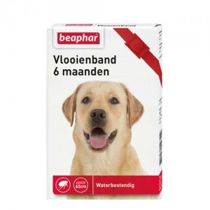 Beaphar Vlooienband Hond - 6 maanden - Rood
