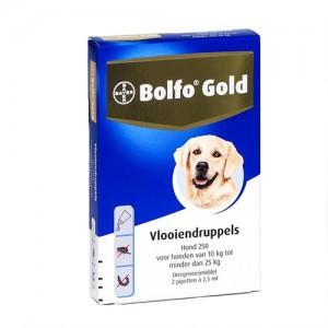 Bolfo Gold Hond 250 - 2 Pipetten