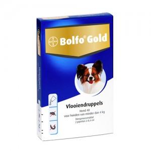 Bolfo Gold Hond 40 - 2 Pipetten