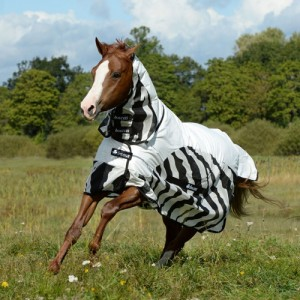 Bucas Buzz-Off Rain Zebra Full Neck - 145