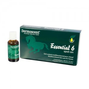 Dermoscent Essential 6 Spot On Paard 4x30ml