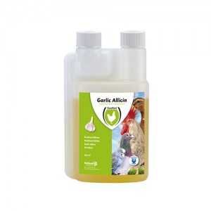 Excellent Garlic Allicin - 250 ml kopen