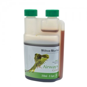 Hilton Herbs Airways Gold for Birds - 250 ml